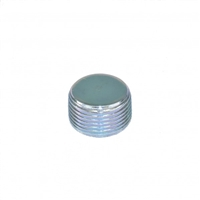 MANIFOLD DRAIN PLUG , OLDER STYLE - RS3533
