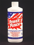 PST100 Power Steering Treatment