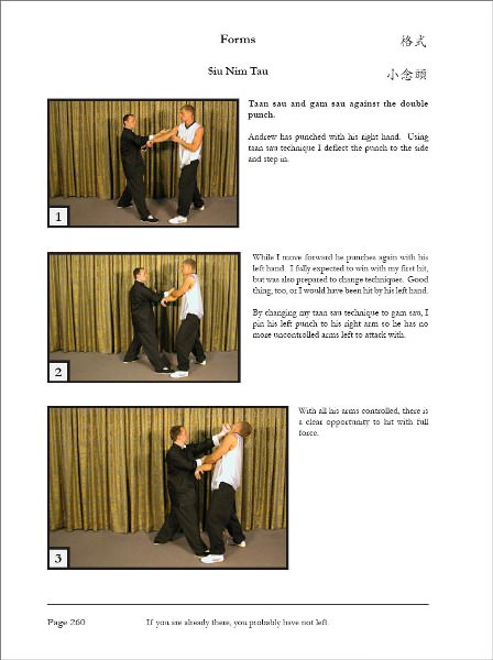The Wing Chun Compendium Volume One Pdf