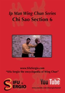 Sifu Sergio Iadarola - Chi Sao Section 6 - DVD