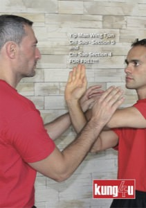 Sifu Taner & Sifu Graziano - Chi Sao Section 4 & 5 DVD