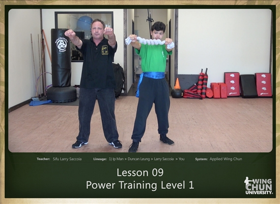 DOWNLOAD: Larry Saccoia - Applied Wing Chun - Lesson 009 - Power Training Level 1
