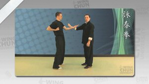 DOWNLOAD: Wayne Belonoha - Ving Tsun System - Lesson 17a - Single Hand Running & Catching