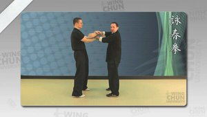 DOWNLOAD: Wayne Belonoha - Ving Tsun System - Lesson 18a - Double Hand Rolling (Poon Sau)
