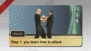 DOWNLOAD: Wayne Belonoha - Ving Tsun System - Lesson 20a - Double Hand Chi Sau, Basic Attacks and Defenses