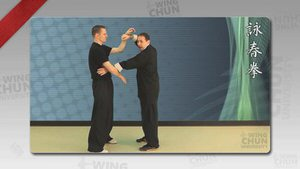 DOWNLOAD: Wayne Belonoha - Ving Tsun System - Lesson 20f - Double Hand Chi Sau, Unstoppables 7-12