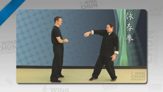 DOWNLOAD: Wayne Belonoha - Ving Tsun System - Lesson 28a - Biu Ji, Parts 3 & 4