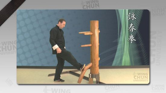DOWNLOAD: Wayne Belonoha - Ving Tsun System - Lesson 36a - Wooden Dummy, Part 3