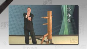 DOWNLOAD: Wayne Belonoha - Ving Tsun System - Lesson 37a - Wooden Dummy, Part 4