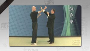 DOWNLOAD: Wayne Belonoha - Ving Tsun System - Lesson 39a - Wooden Dummy, Part 6