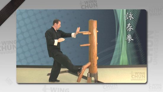 DOWNLOAD: Wayne Belonoha - Ving Tsun System - Lesson 40a - Wooden Dummy, Part 7 & 8