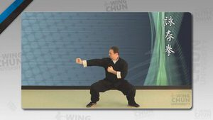 DOWNLOAD: Wayne Belonoha - Ving Tsun System - Lesson 41a - Battle Punches