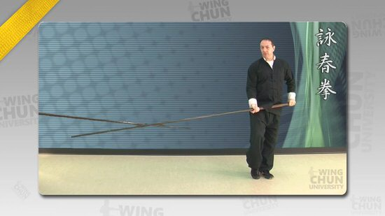 DOWNLOAD: Wayne Belonoha - Ving Tsun System - Lesson 44a - Long Pole Form, Parts 5 to 6.5