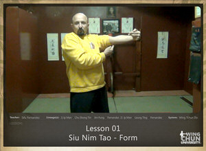 DOWNLOAD: Sifu Fernandez - WingTchunDo - Lesson 01 - Siu Nim Tao - Form