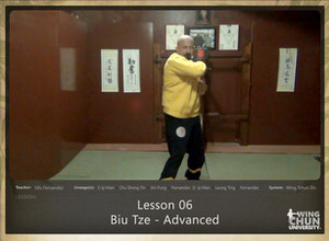 DOWNLOAD: Sifu Fernandez - WingTchunDo - Lesson 06 - Biu Tze - Advanced