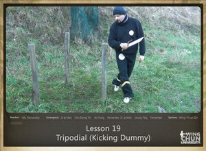 DOWNLOAD: Sifu Fernandez - WingTchunDo - Lesson 19 - Tripodial (Kicking Dummy)
