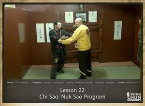 DOWNLOAD: Sifu Fernandez - WingTchunDo - Lesson 22 - Chi Sao - Nuk Sao Program