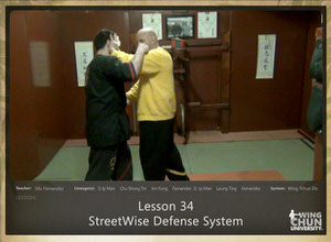 DOWNLOAD: Sifu Fernandez - WingTchunDo - Lesson 34 - Defense - StreetWise Defense System