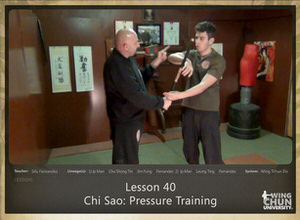 DOWNLOAD: Sifu Fernandez - WingTchunDo - Lesson 40 - Chi Sao - Pressure Training
