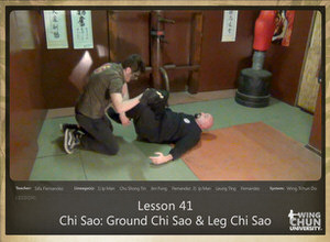 DOWNLOAD: Sifu Fernandez - WingTchunDo - Lesson 41 - Chi Sao - Ground Chi Sao and Leg Chi Sao