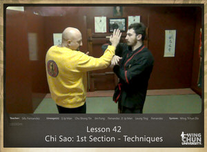 DOWNLOAD: Sifu Fernandez - WingTchunDo - Lesson 42 - Chi Sao - 1st Section - Techniques