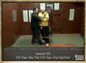 DOWNLOAD: Sifu Fernandez - WingTchunDo - Lesson 54 - Chi Sao - Biu Tze Chi Sao 2nd Section