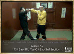 DOWNLOAD: Sifu Fernandez - WingTchunDo - Lesson 55 - Chi Sao - Biu Tze Chi Sao 3rd Section