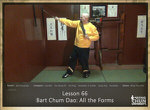 DOWNLOAD: Sifu Fernandez - WingTchunDo - Lesson 66 - Bart Chum Dao - All the Forms with Swords