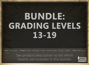 DOWNLOAD: Sifu Fernandez - WingTchunDo - Bundle - Grading Levels 13-19 (Sifu/Master Levels)