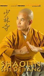 DOWNLOAD: Shi de Yang - Shaolin Kung-Fu Shi De Yang Interview