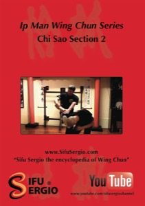 Sifu Sergio Iadarola - Chi Sao Section 2 - DVD