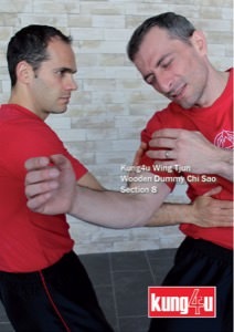 Sifu Taner & Sifu Graziano - Wooden Dummy Chi Sao Section 8