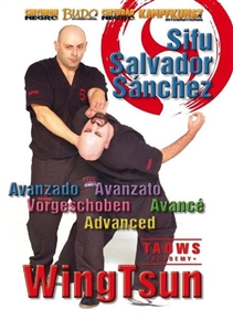 TAOWS Academy 02 - Advanced Wing Tsun DOWNLOAD