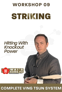 (Download Only!) - Wayne Belonoha - WBVTS - Hitting/Knockout Workshop