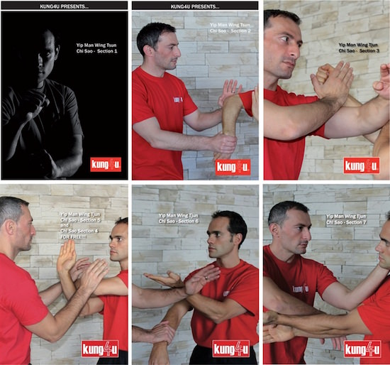 Bundle - Sifu Taner & Sifu Graziano - Chi Sao 1-7 DVD Collection