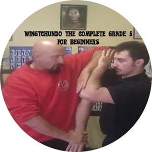 Sifu Fernandez - WingTchunDo The Complete Grade 5 for Beginners