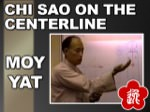 Moy Yat - Chi Sao on the Centerline