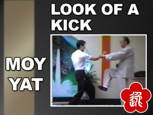 Moy Yat - The Look of a Kick