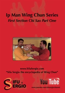 Sifu Sergio Iadarola - Chi Sao Section 1 Part 1 - DVD