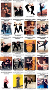 Lamar Davis - BUNDLE - 20 Video Set - Original Jeet Kune Do Collection