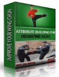 Vik Hothi - Attribute Building for Devastating Kicks