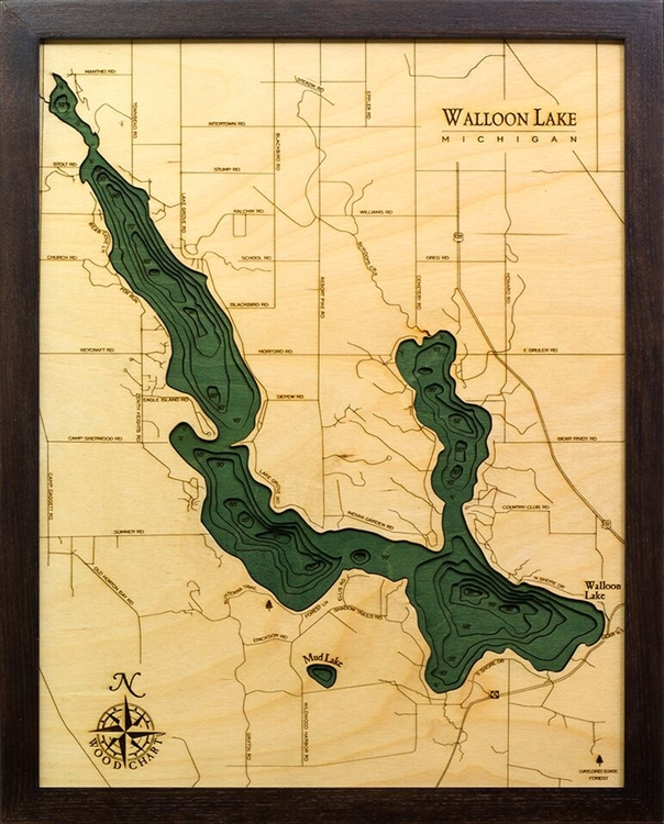 Walloon Lake Nautical Topographic Art: Bathymetric Real Wood Decorative Chart