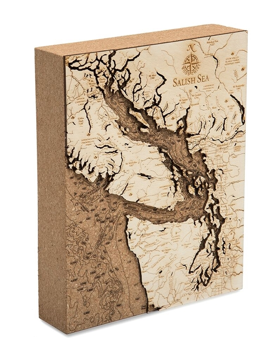 Salish Sea Cork Map Nautical Topographic Art