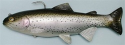 "Huddleston Deluxe 8"" Trout"