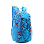 BACKPACK, COLLAPSIBLE, BUNGEE FRONT-SWEST DESIGNS