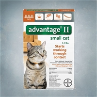 Advantage II Orange (Cats 1-9 lbs) 6 pack