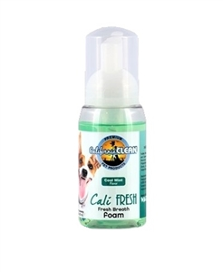 California Clean Fresh Breath Foam 8.oz