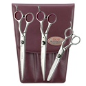 "Geib Entree 7.5"" Shears & Blender Set"