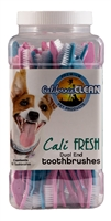 Cali Clean Pet Toothbrushes 50 count container