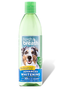 TROPICLEAN Fresh Breath Advanced Whitening Oral Care Water Additive 16oz